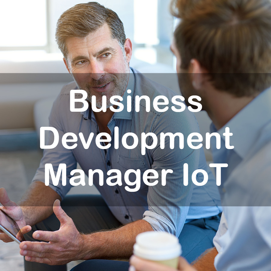 b-development-manager-ioT